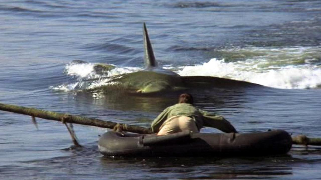 jaws-2-ending