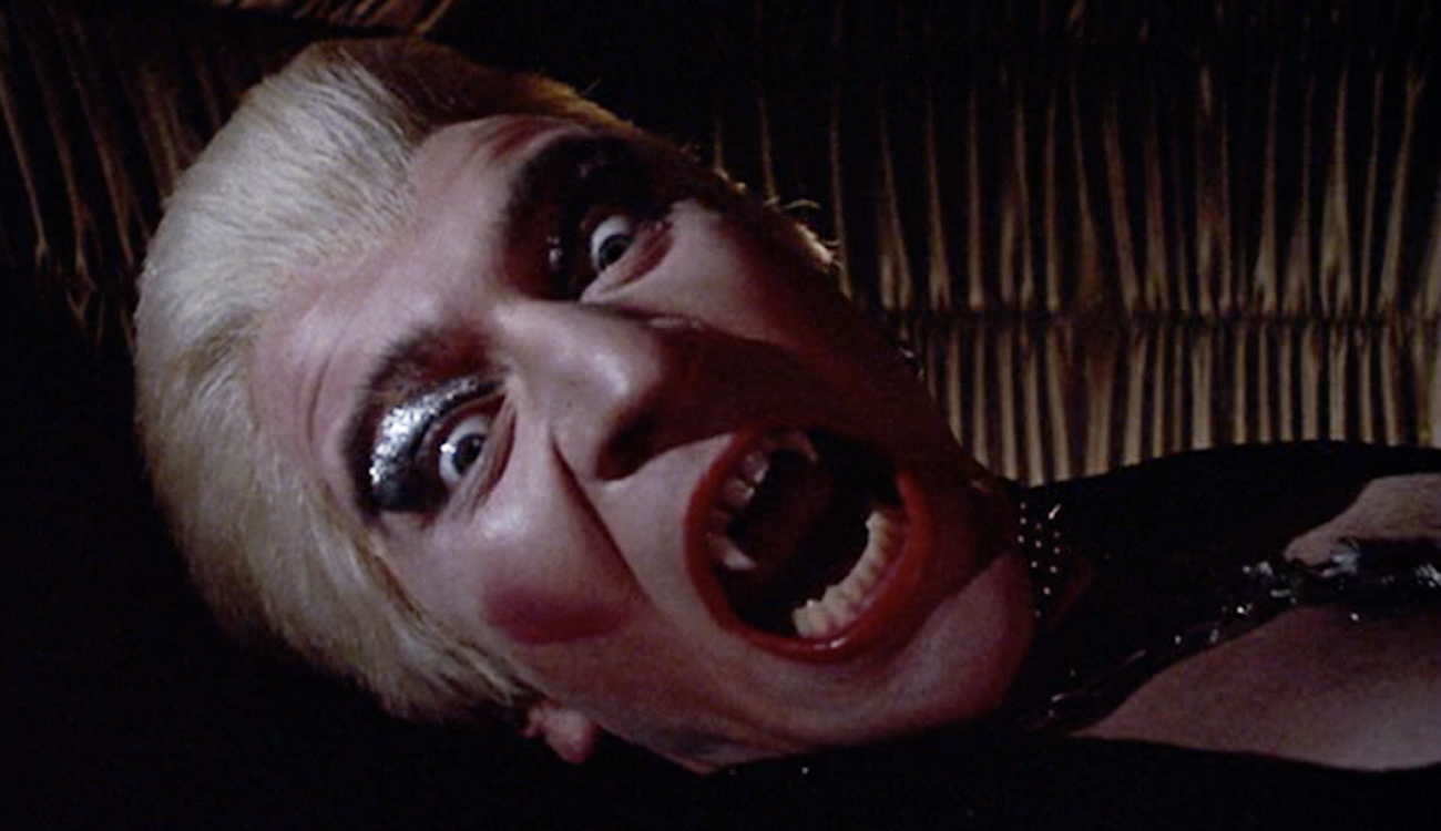 Body Double Horror Movies That Deserve the Criterion Treatment