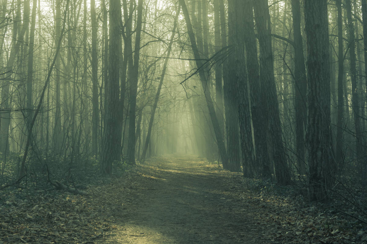 13th Floor Legend >> 5 Frightening Legends from the Appalachian Trail – The ...